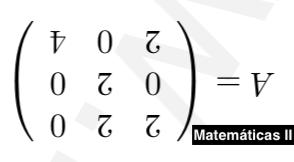 Ejercicio de Matriz InversaMINV03-II